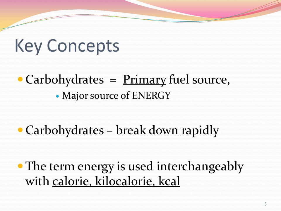 Key Concepts Carbohydrates = Primary fuel source,