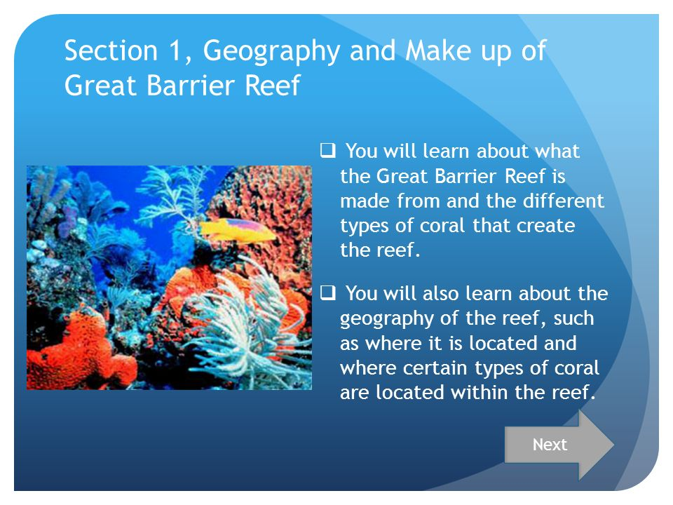 shipping and the great barrier reef essay The formation of any reef structure is a slow, and time-consuming process, and the great barrier reef is no exception all coral reefs are made up of calcium-based corals the corals found in the great barrier reef may not all be reef builders, but are essential to the structure and survival of the reef.