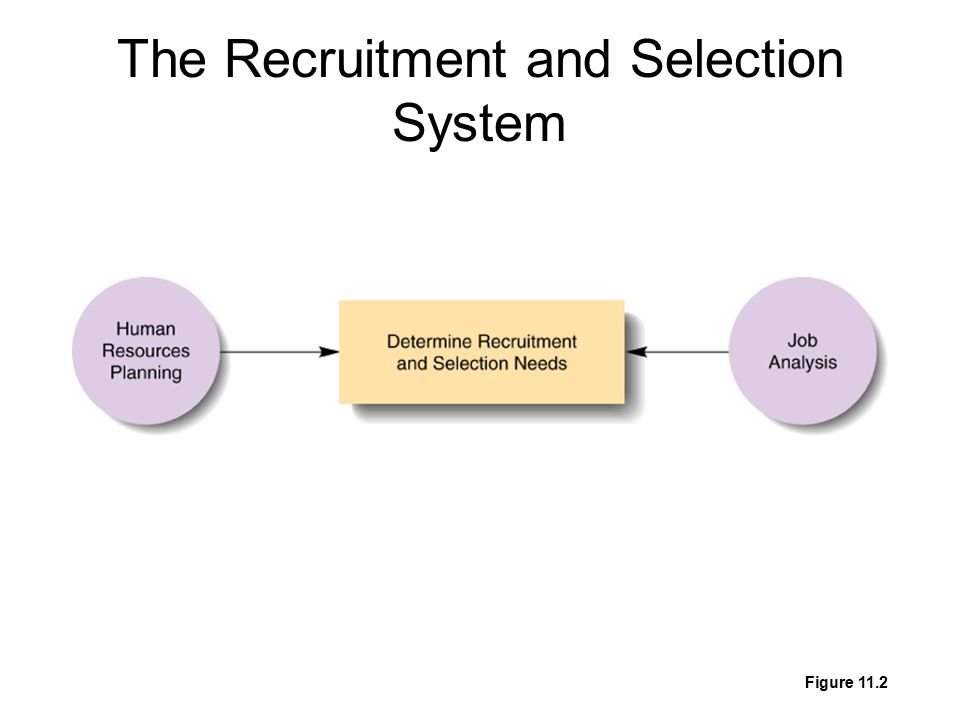 The Recruitment and Selection System