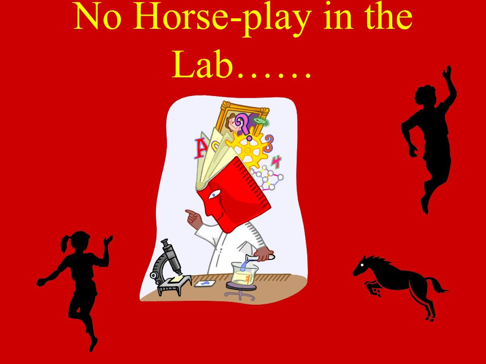 No Horse-play in the Lab……