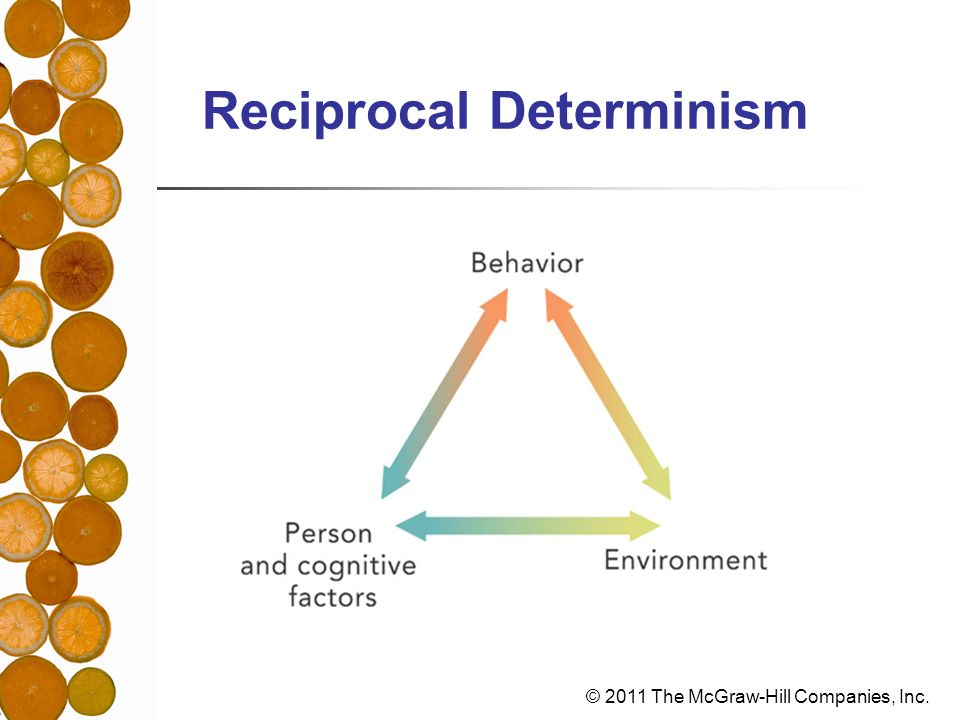 reciprocal determinism