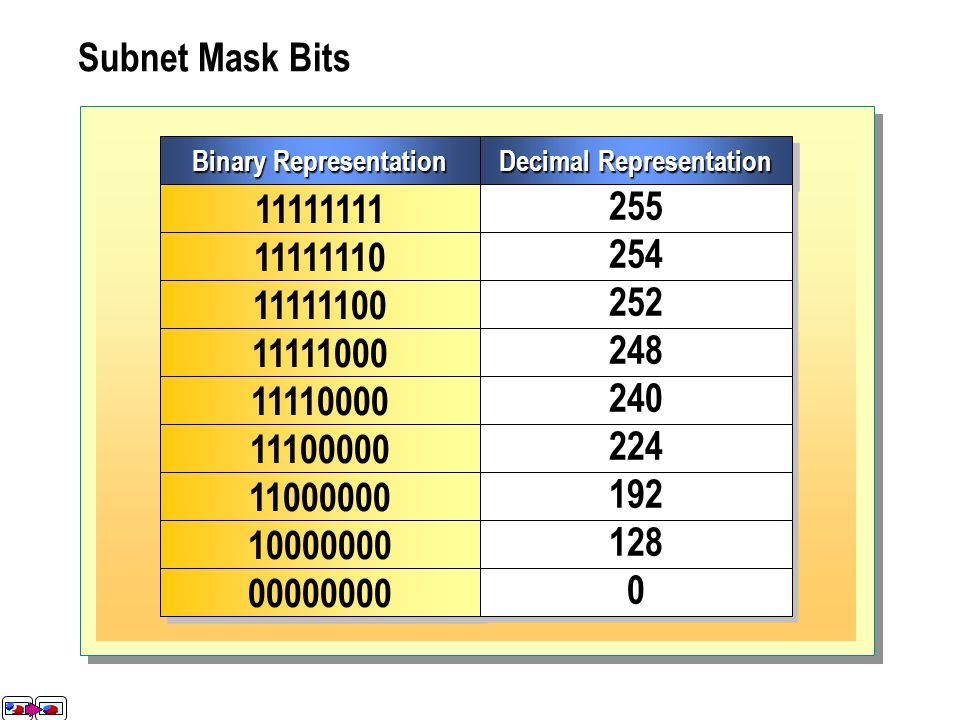 binary representation of 248 geld investieren in bitcoin