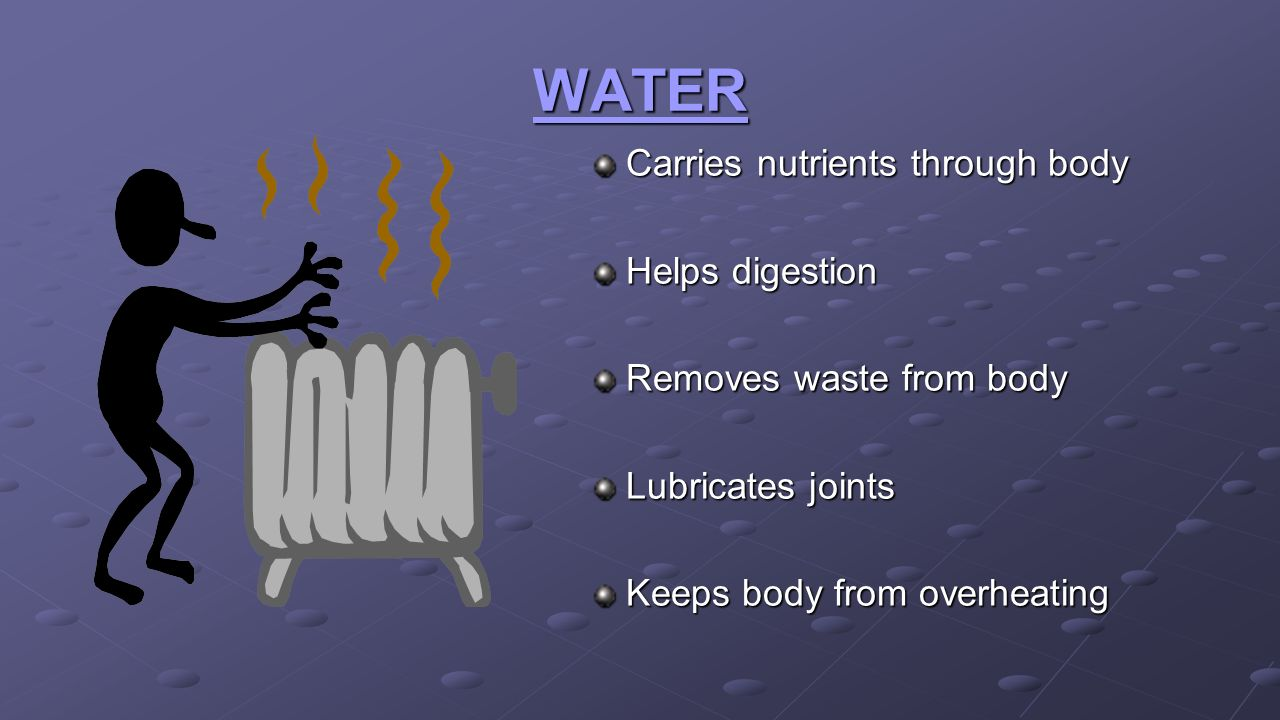 WATER Carries nutrients through body Helps digestion
