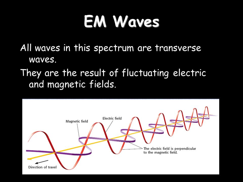 EM Waves All waves in this spectrum are transverse waves.