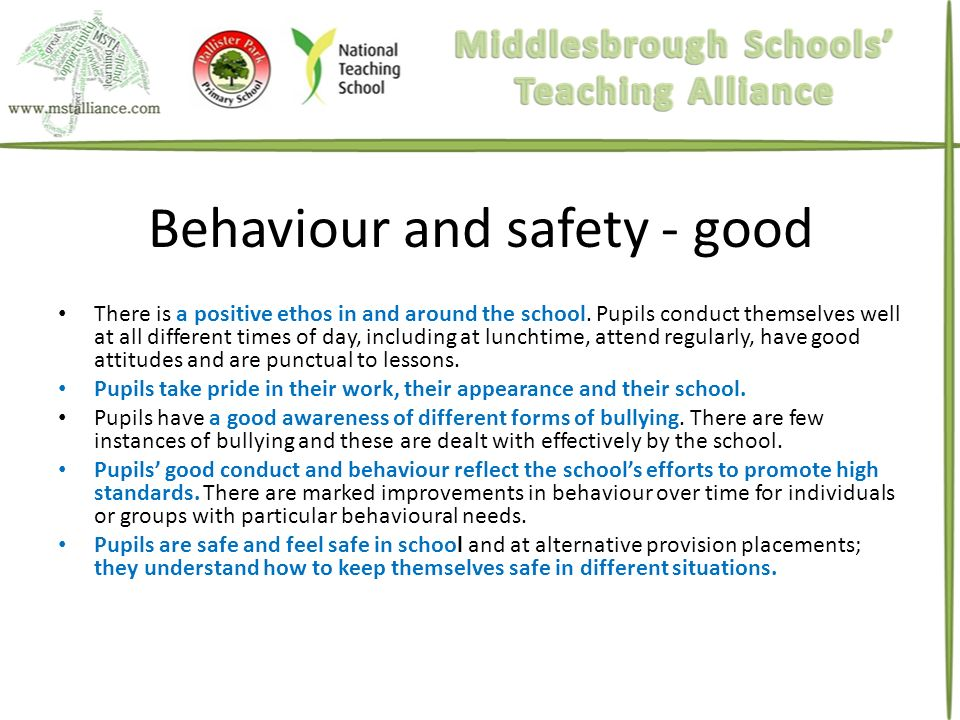 Behaviour and safety - good