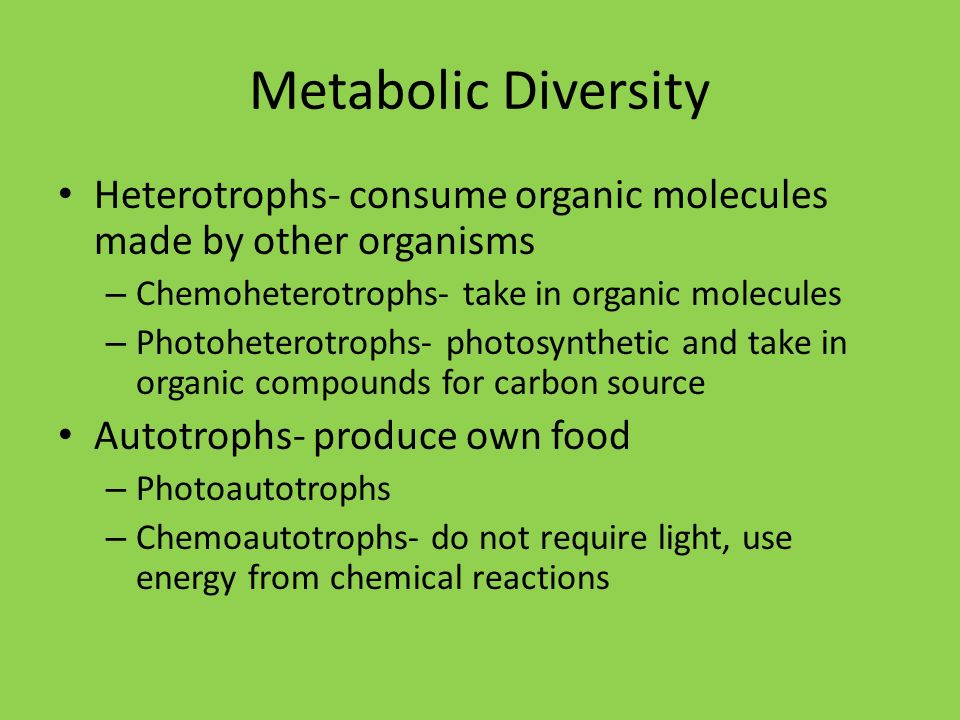 Metabolic Diversity Heterotrophs- consume organic molecules made by other organisms. Chemoheterotrophs- take in organic molecules.