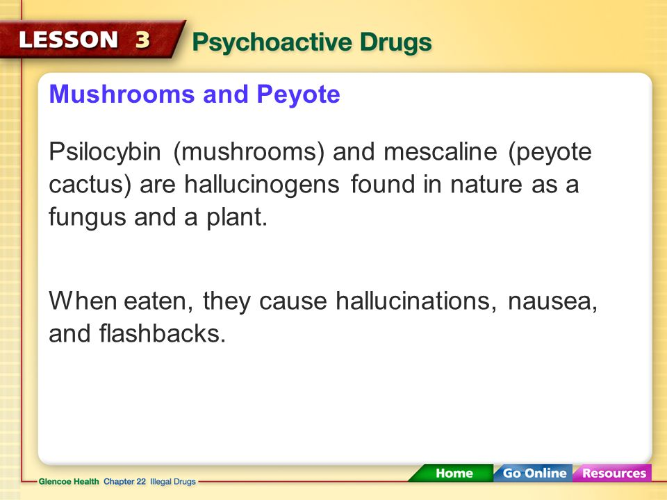 Mushrooms and Peyote Psilocybin (mushrooms) and mescaline (peyote cactus) are hallucinogens found in nature as a fungus and a plant.