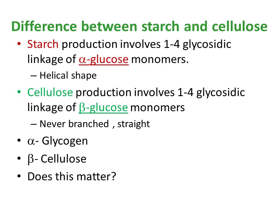 difference between starch and glycogen