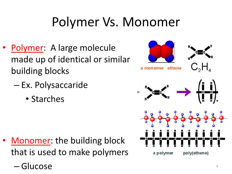 The Building Blocks Or Monomers That Make Up Carbohydrates Are
