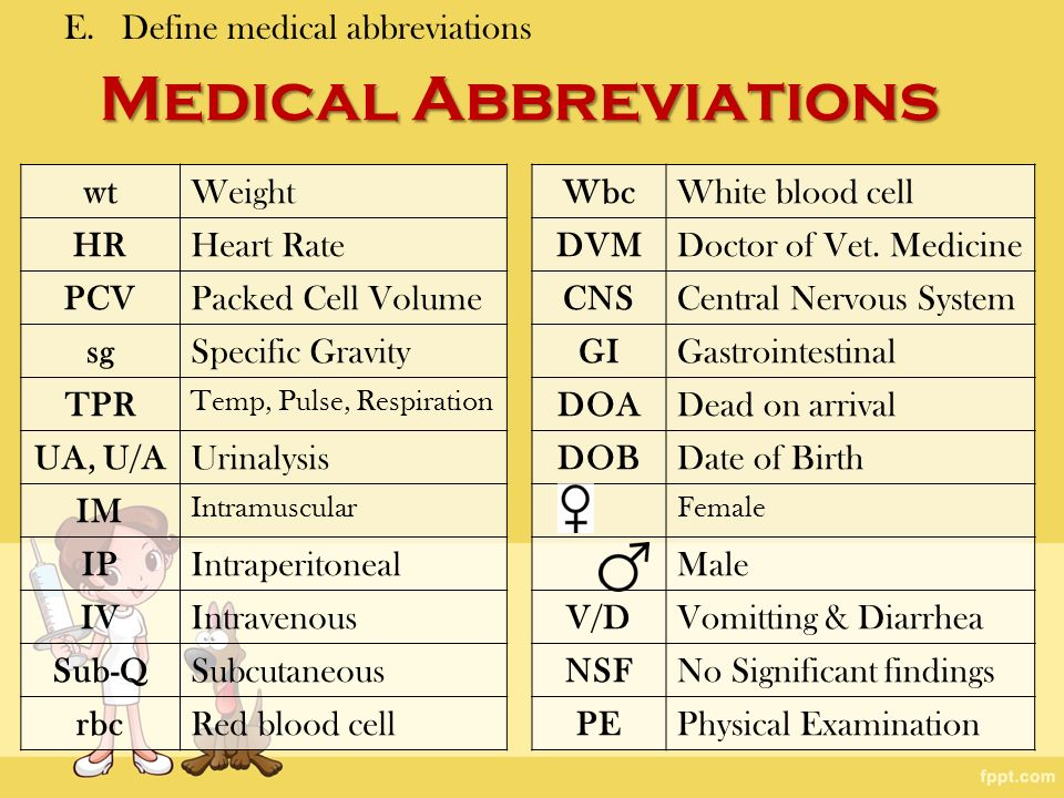 all about medical terminology abbreviations lgtccomau www