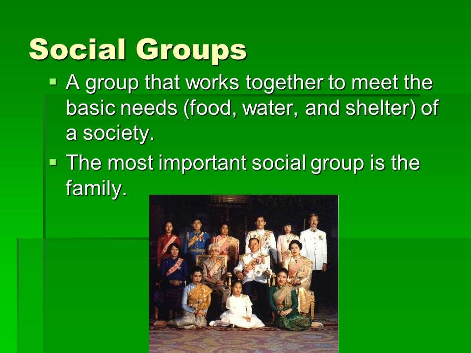 Social Groups A group that works together to meet the basic needs (food, water, and shelter) of a society.