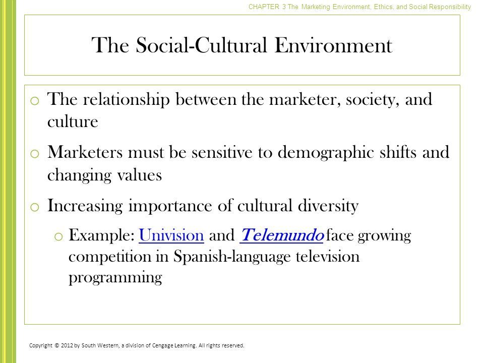 Chapter 3 The Marketing Environment Ethics And Social