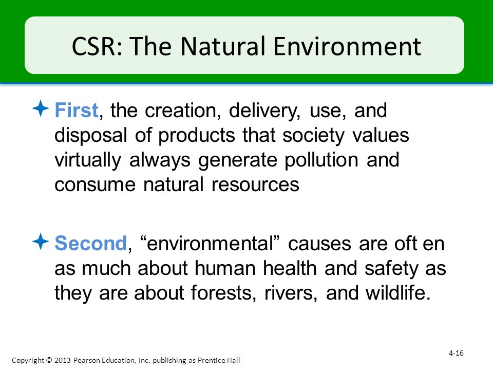 CSR: The Natural Environment