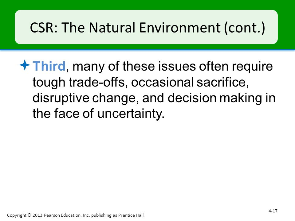 CSR: The Natural Environment (cont.)