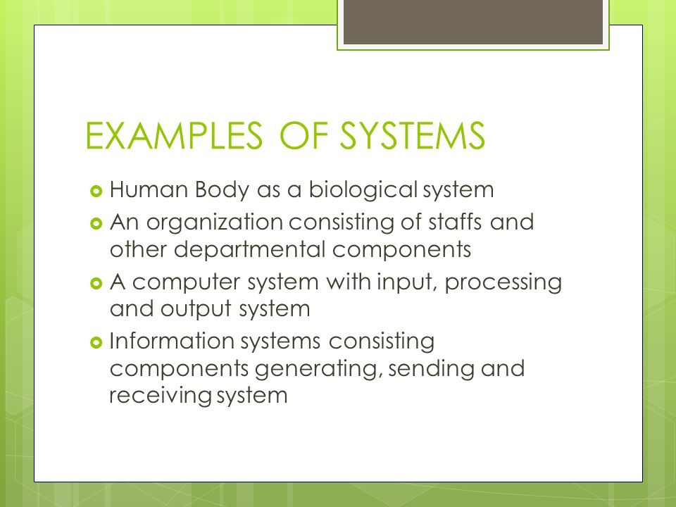 EXAMPLES OF SYSTEMS Human Body as a biological system