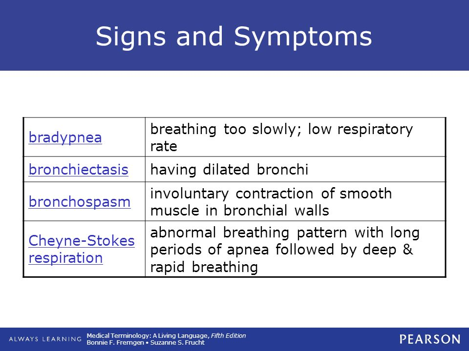 7 Respiratory System  - ppt download