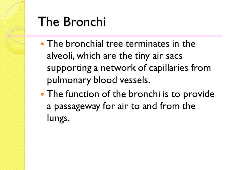 Medical Terminology A Word Building Approach Ppt Video Online Download