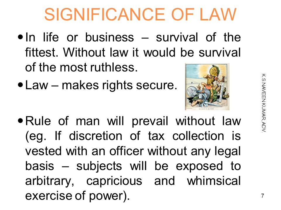 what would life be like without laws