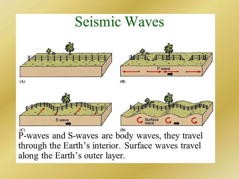 Seismic Waves P-waves and S-waves are body waves, they travel through the Earth's interior.