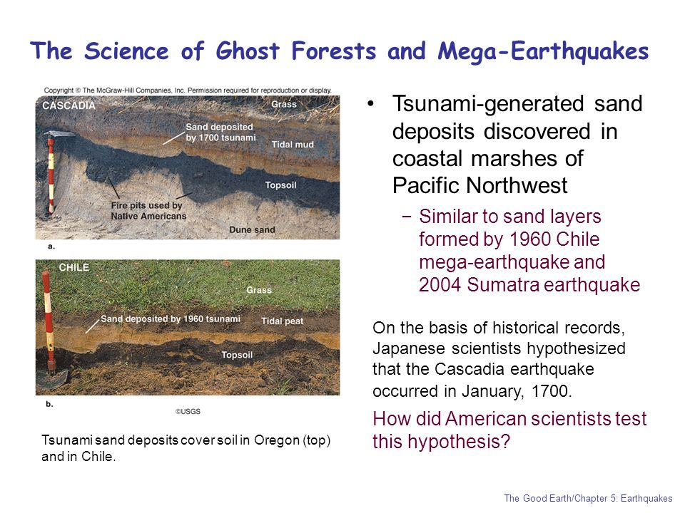 Chapter 5: Earthquakes Experiencing an Earthquake firsthand - ppt