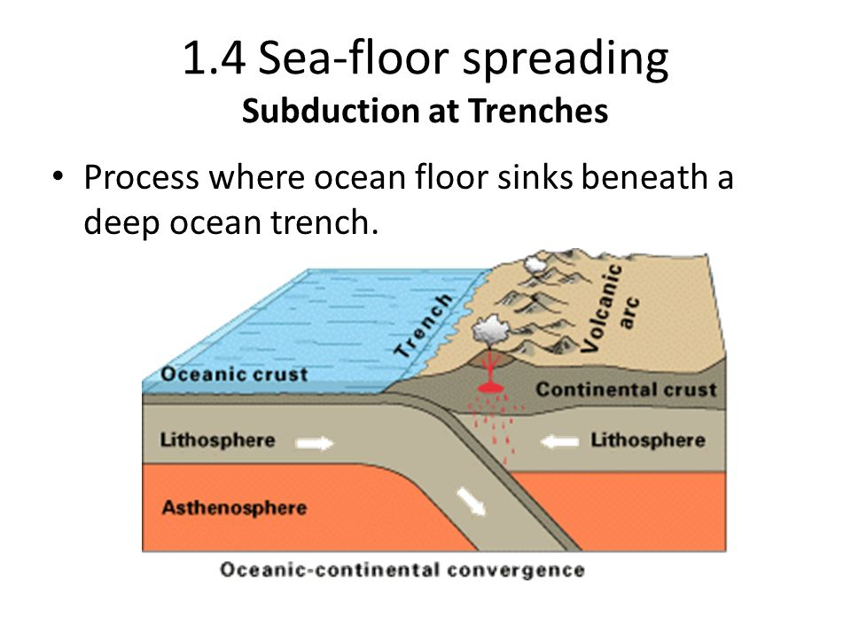 1.4 Sea-floor spreading Subduction at Trenches