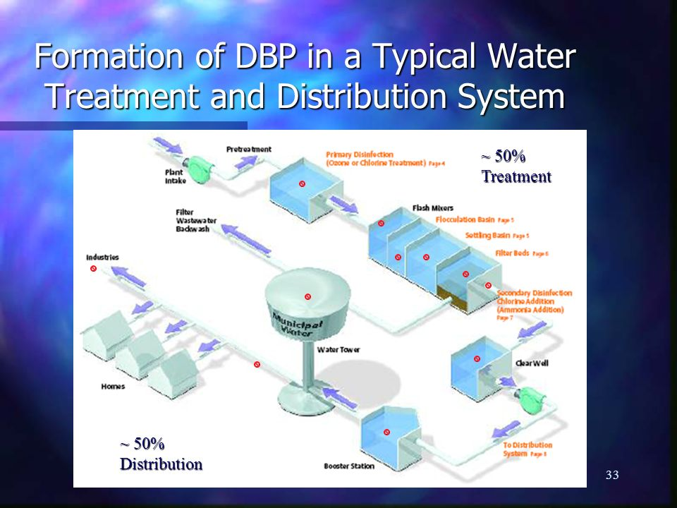 Formation of DBP in a Typical Water Treatment and Distribution System