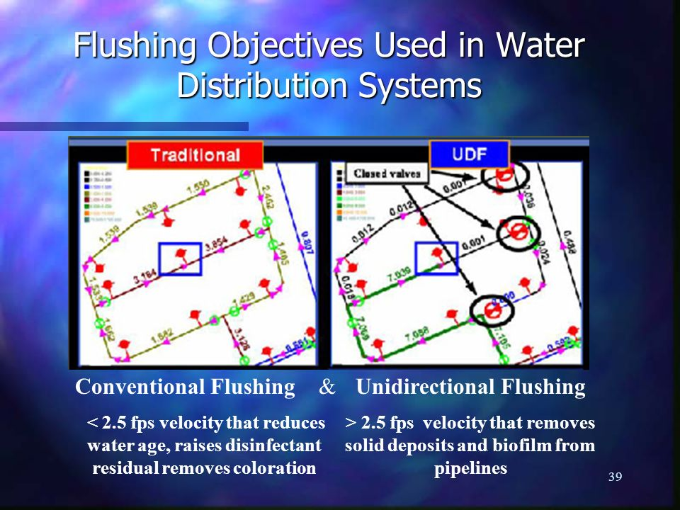 Flushing Objectives Used in Water Distribution Systems
