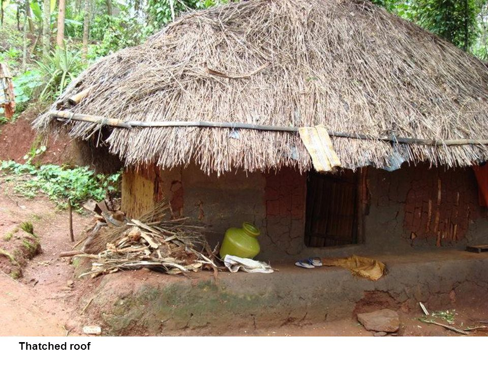 Thatched roof In the past, most roofs of Adivasi houses were built like this one. Do you know the name of this type of roof