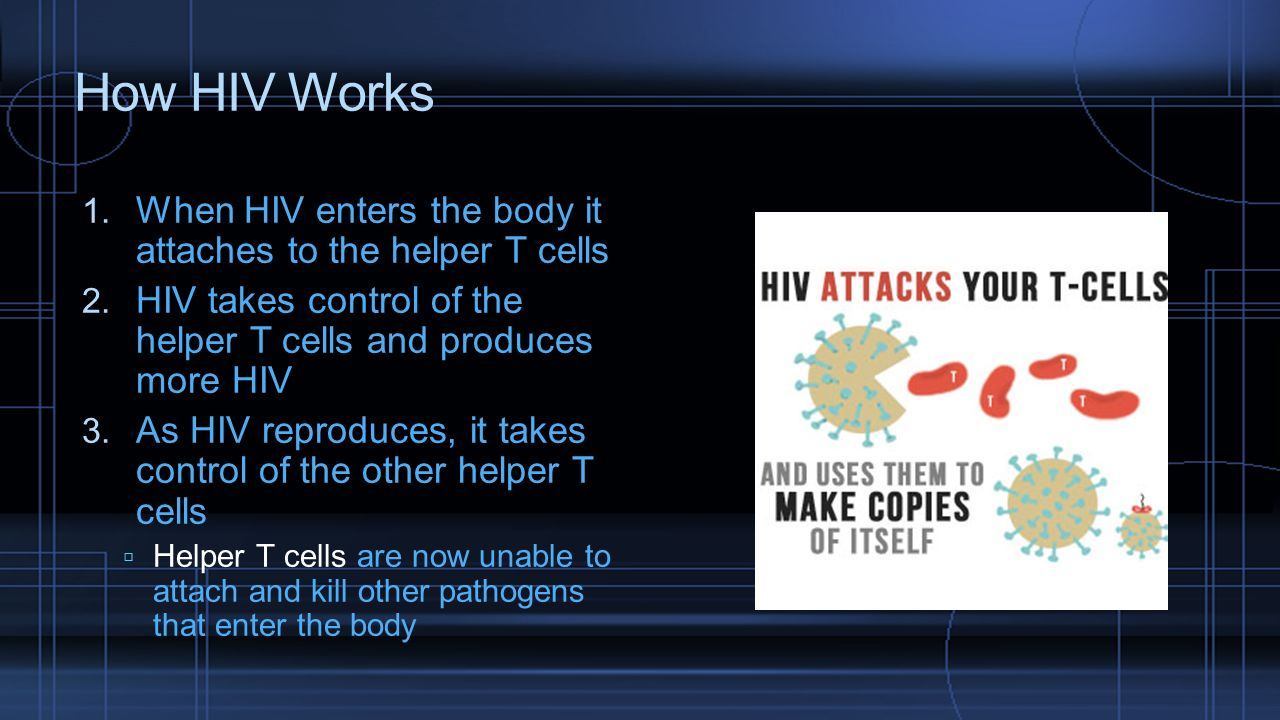 How HIV Works When HIV enters the body it attaches to the helper T cells. HIV takes control of the helper T cells and produces more HIV.