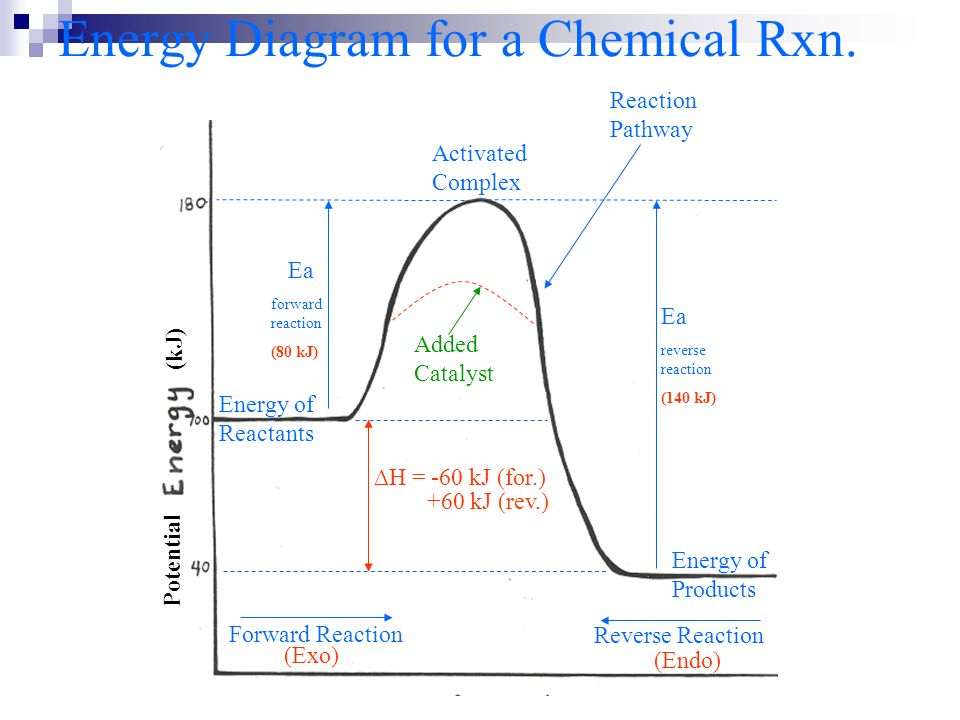 Energy Diagram for a Chemical Rxn.