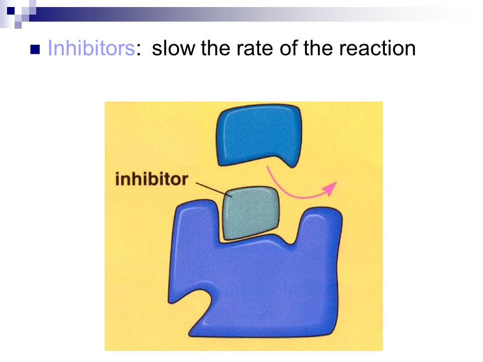 Inhibitors: slow the rate of the reaction
