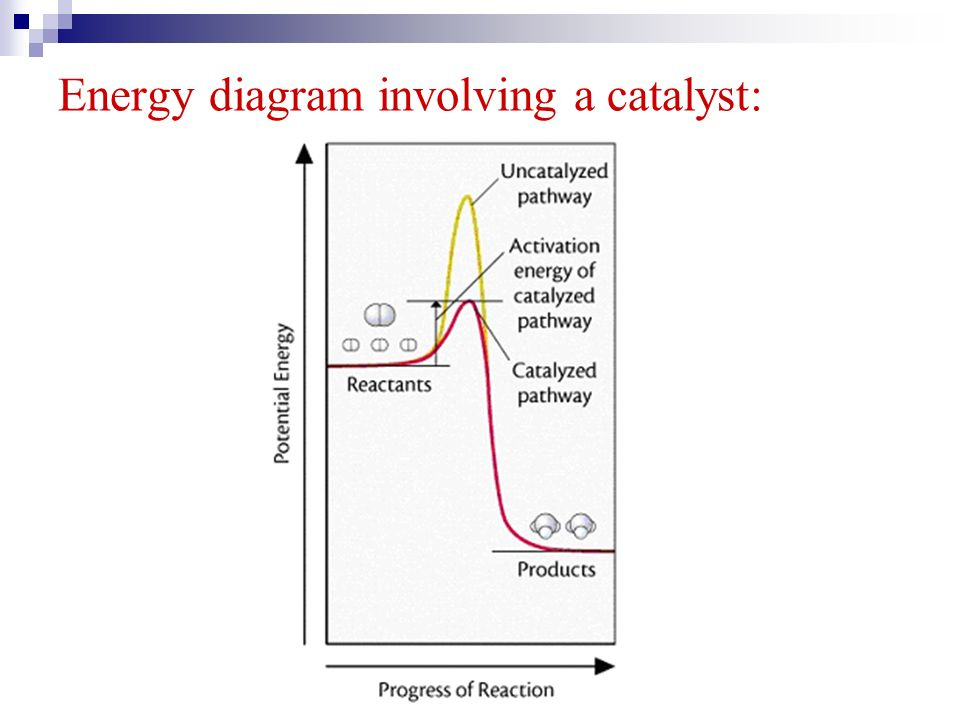 Energy diagram involving a catalyst: