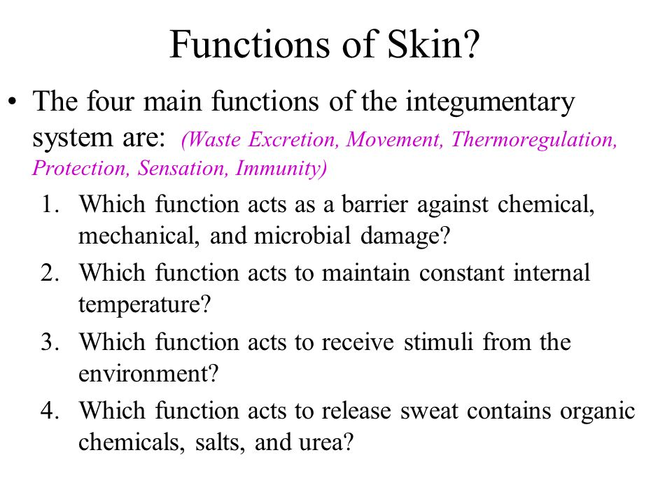 four protective functions of the skin are