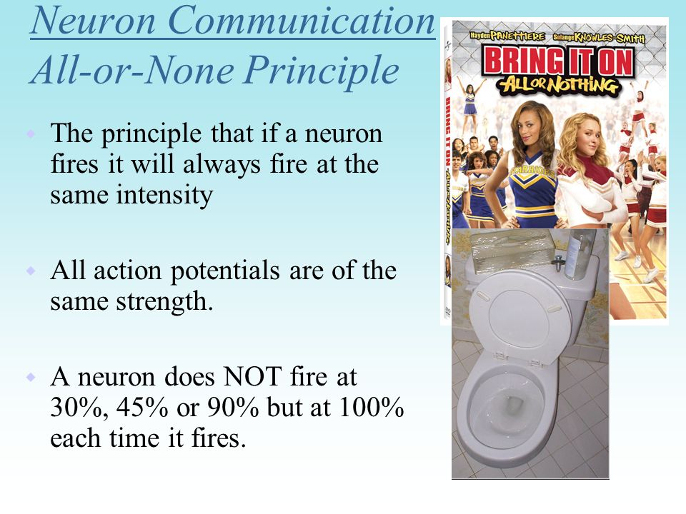 Neuron Communication All-or-None Principle