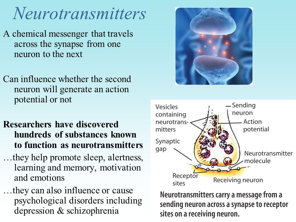Neurotransmitters A chemical messenger that travels across the synapse from one neuron to the next.