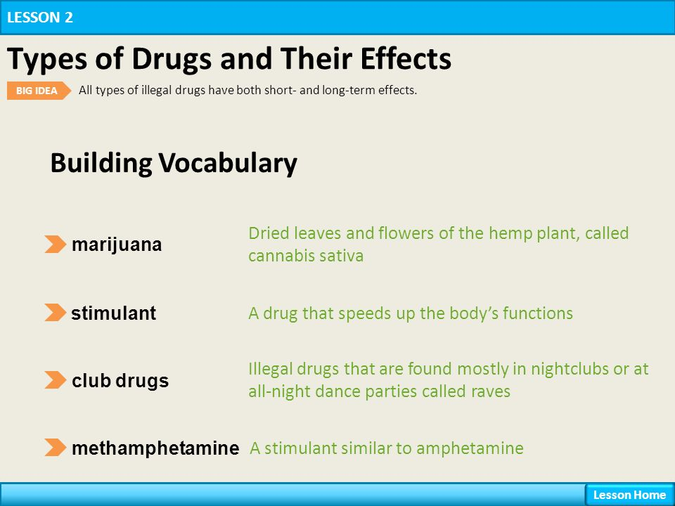 Chapter 16 Drugs Lesson 2 Types of Drugs and Their Effects ...