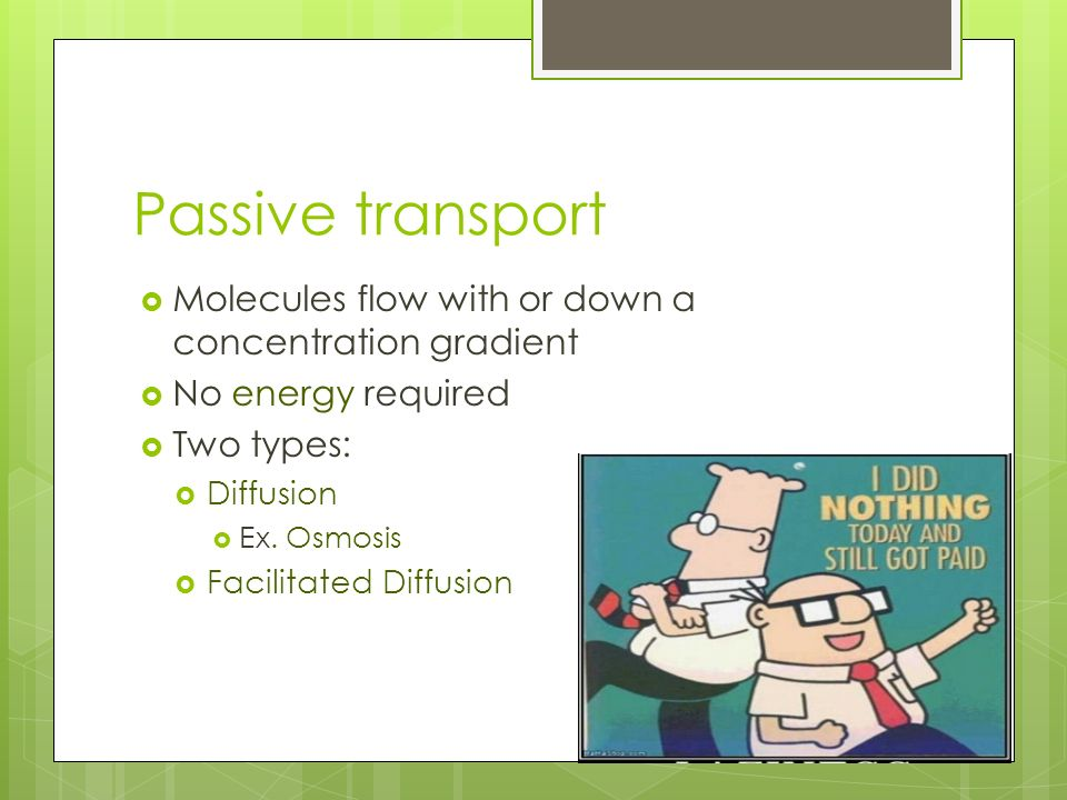 Passive transport Molecules flow with or down a concentration gradient