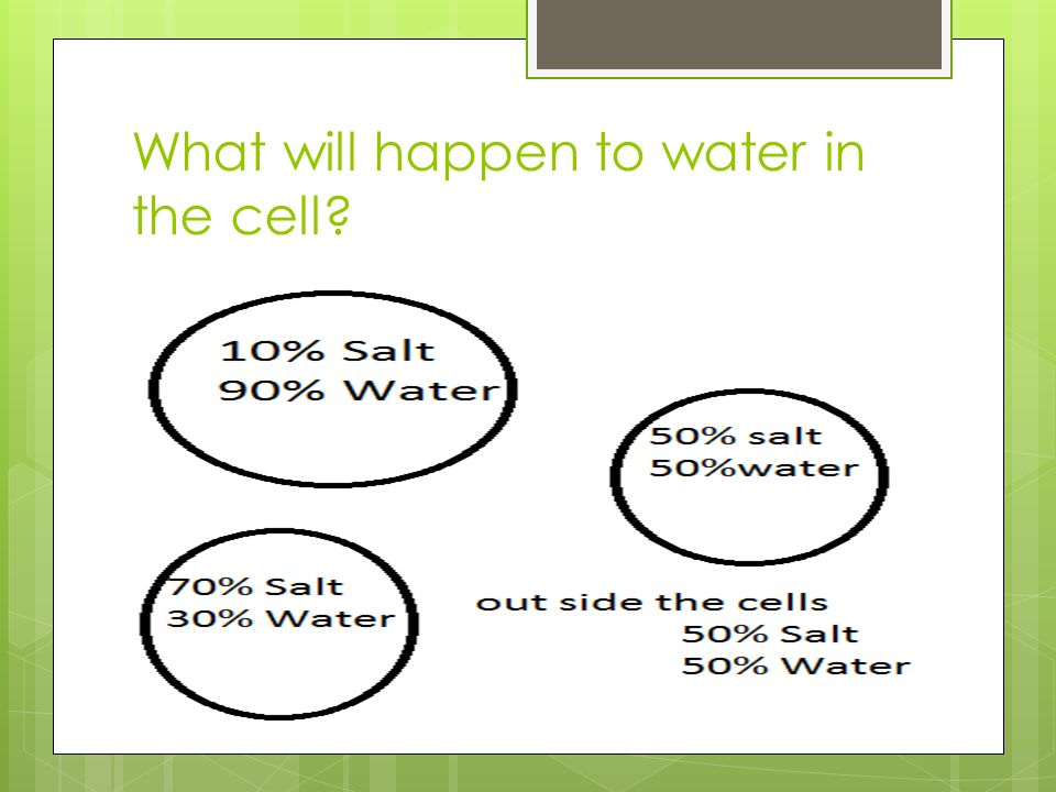 What will happen to water in the cell
