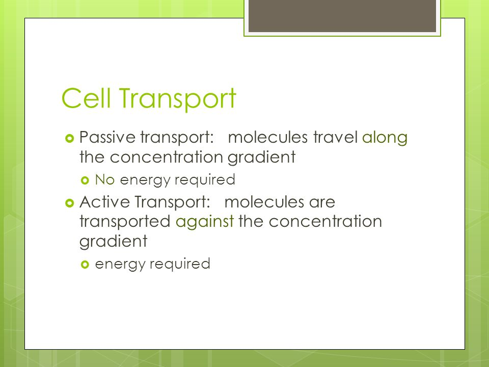 Cell Transport Passive transport: molecules travel along the concentration gradient. No energy required.