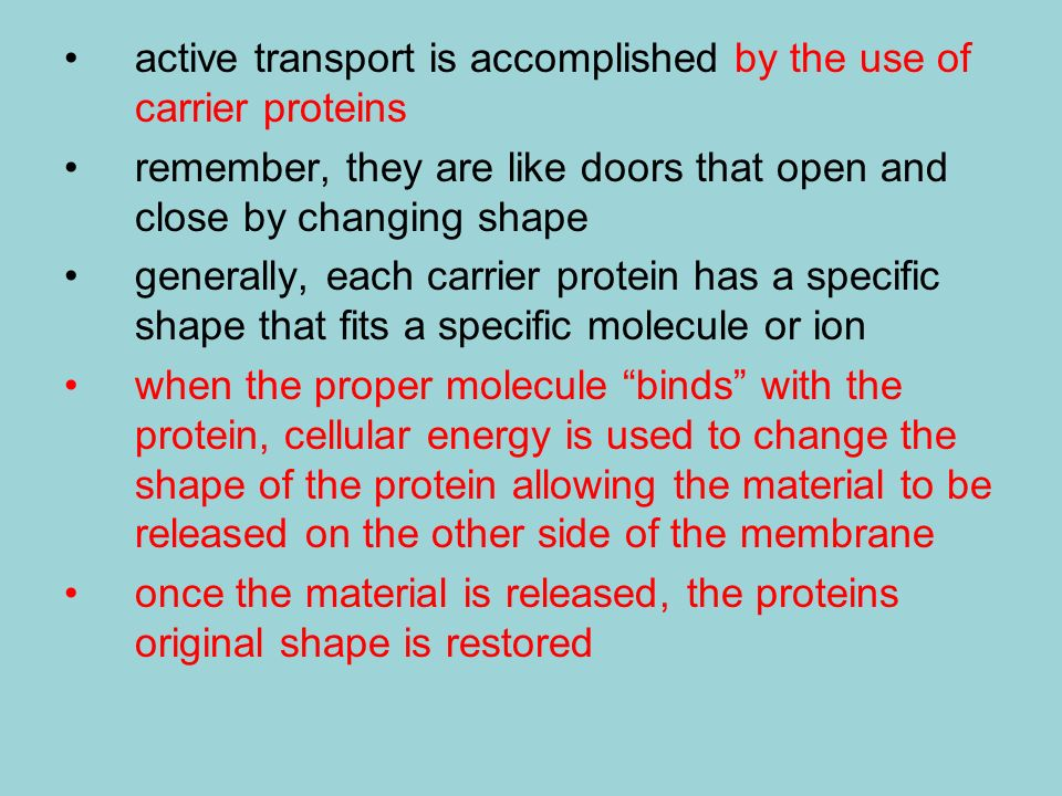 active transport is accomplished by the use of carrier proteins