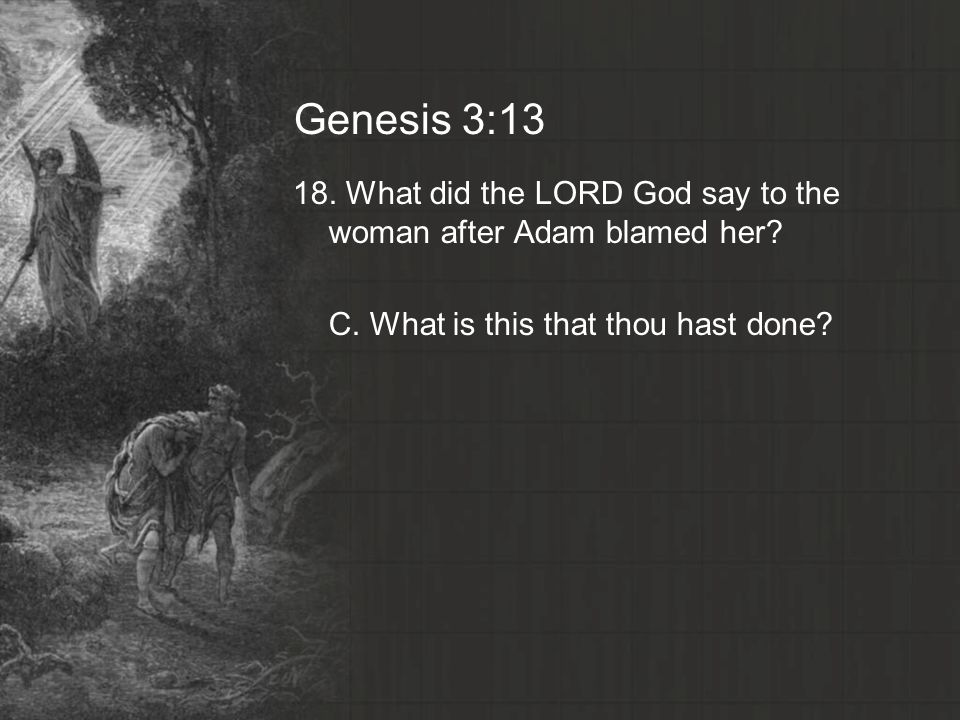 Genesis 3: What did the LORD God say to the woman after Adam blamed her.