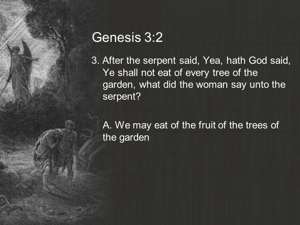 Genesis 3:2 3. After the serpent said, Yea, hath God said, Ye shall not eat of every tree of the garden, what did the woman say unto the serpent