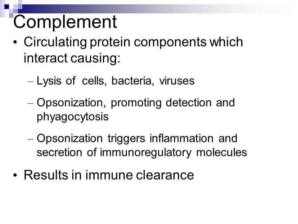 Complement Circulating protein components which interact causing: