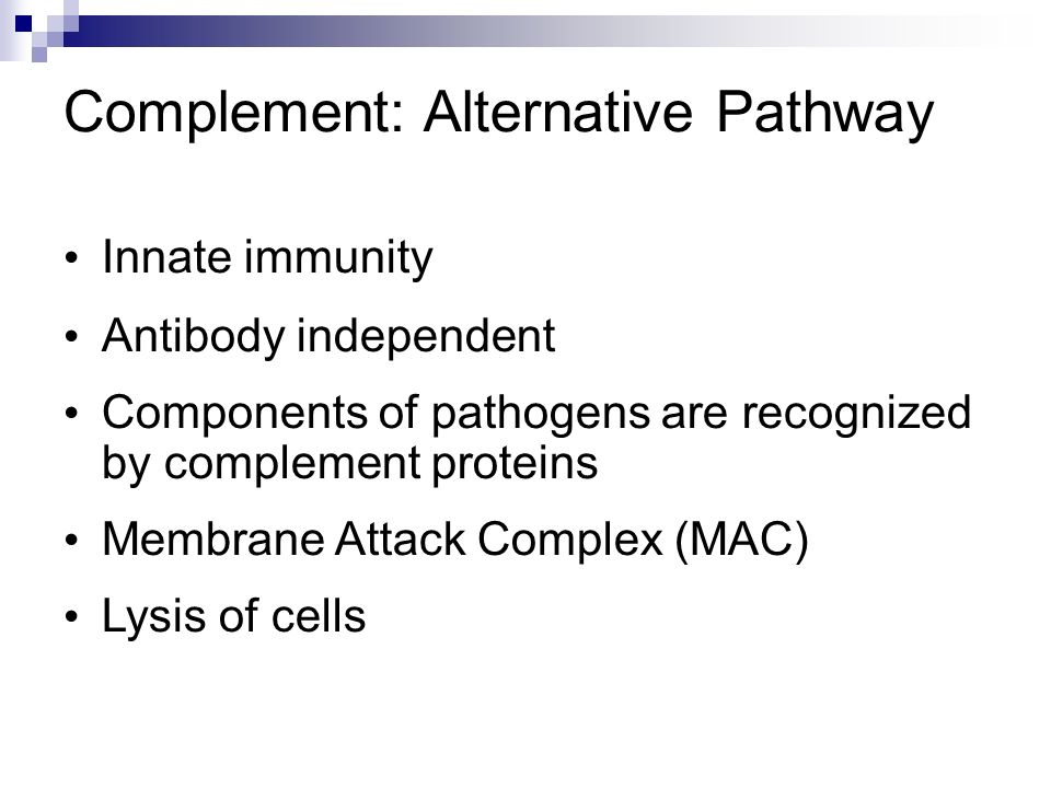 Complement: Alternative Pathway