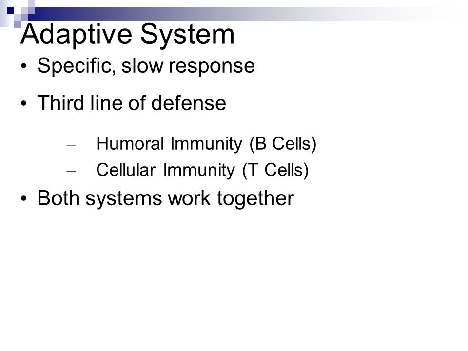 Adaptive System Specific, slow response Third line of defense