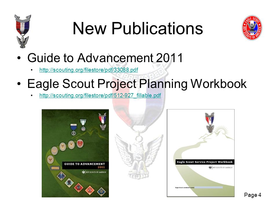 Eagle Scout Project Workbook 2013 Fillable Ebook