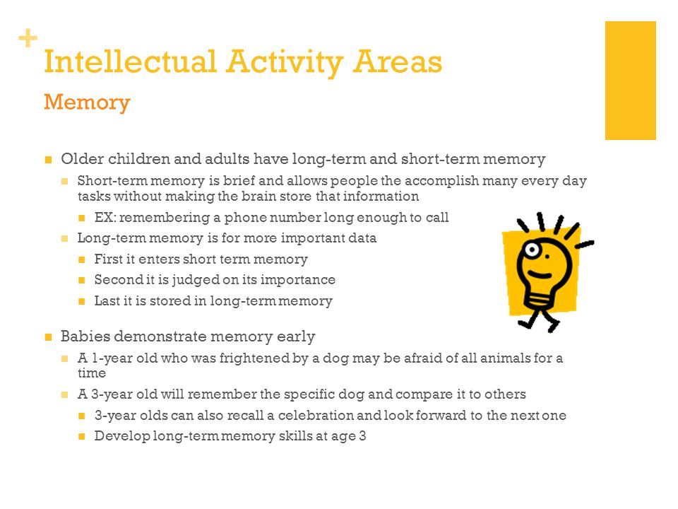 Intellectual Activity Areas