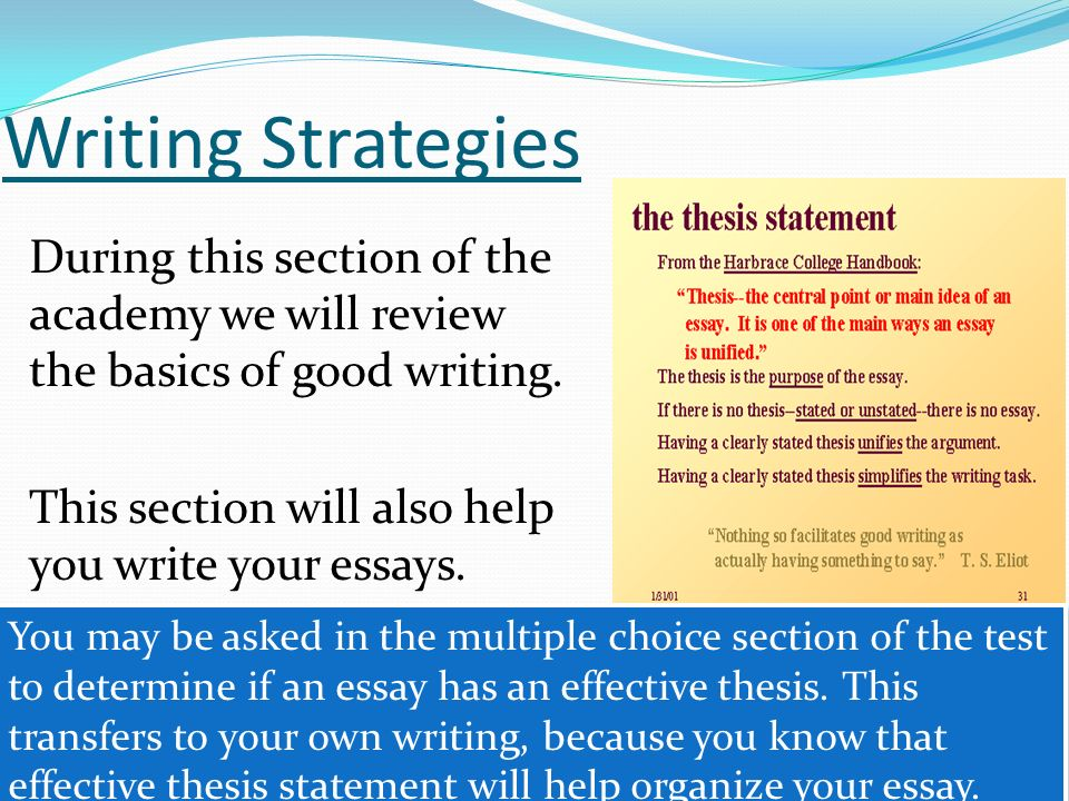 Writing Strategies During this section of the academy we will review the basics of good writing. This section will also help you write your essays.