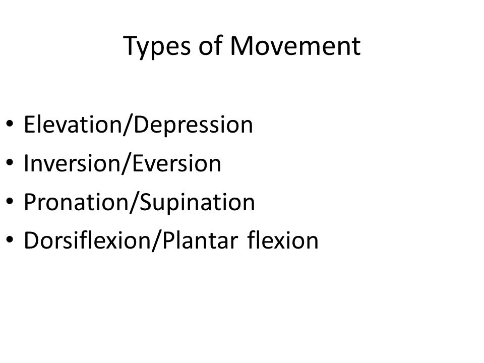 Types of Movement Elevation/Depression Inversion/Eversion