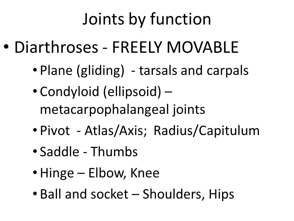 Diarthroses - FREELY MOVABLE